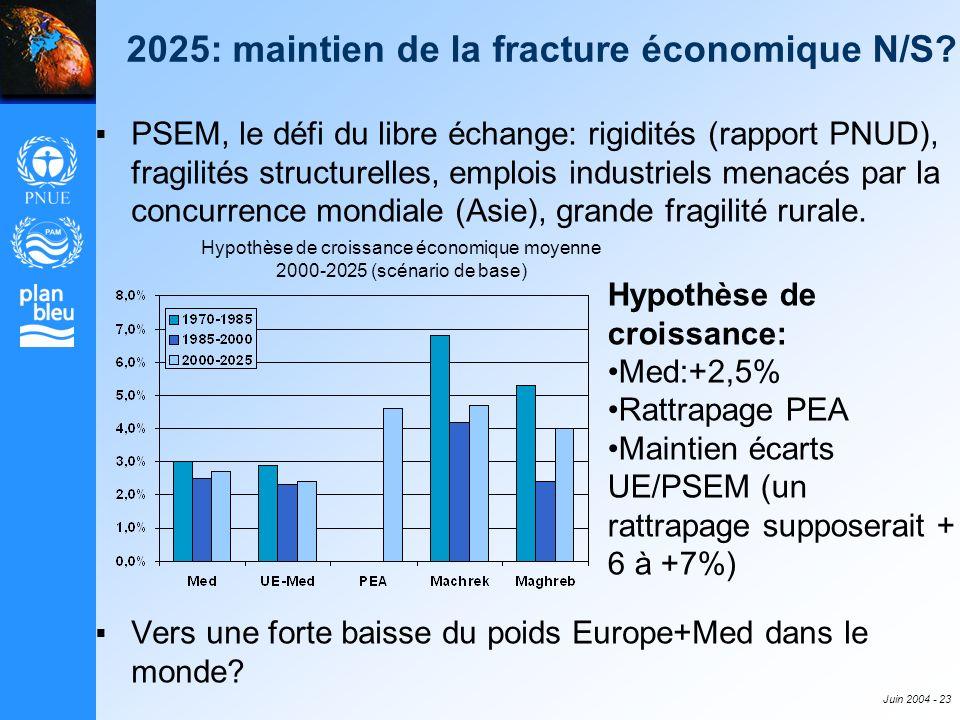 Juin 2004 - 23 PSEM, le défi du libre échange: rigidités (rapport PNUD), fragilités structurelles, emplois industriels menacés par la concurrence mond