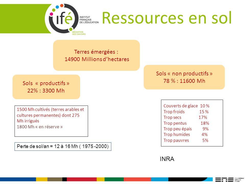 Ressources en sol Terres émergées : 14900 Millions dhectares Sols « productifs » 22% : 3300 Mh Sols « non productifs » 78 % : 11600 Mh Couverts de gla