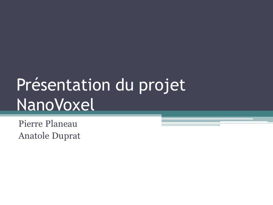 Présentation du projet NanoVoxel Pierre Planeau Anatole Duprat