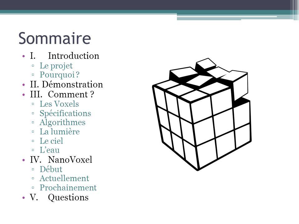 Sommaire I.Introduction Le projet Pourquoi ? II. Démonstration III.Comment ? Les Voxels Spécifications Algorithmes La lumière Le ciel Leau IV.NanoVoxe