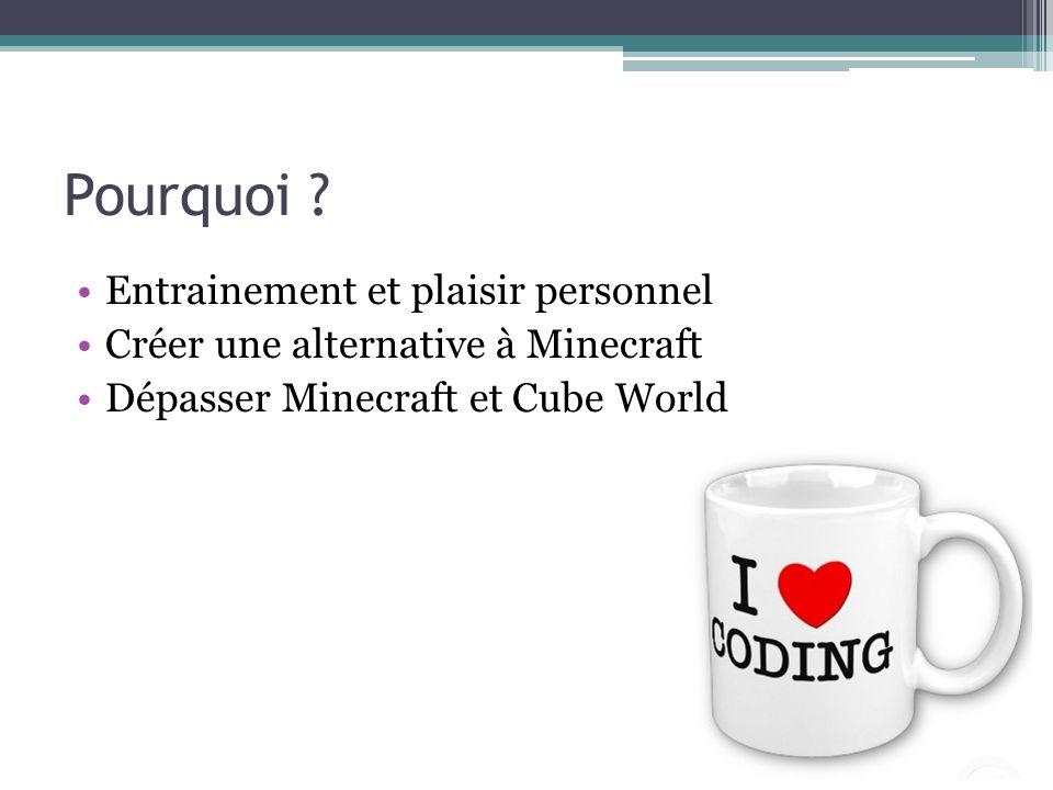 Pourquoi ? Entrainement et plaisir personnel Créer une alternative à Minecraft Dépasser Minecraft et Cube World