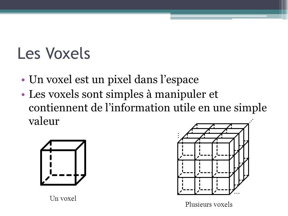 Les Voxels Un voxel est un pixel dans lespace Les voxels sont simples à manipuler et contiennent de linformation utile en une simple valeur Un voxel P