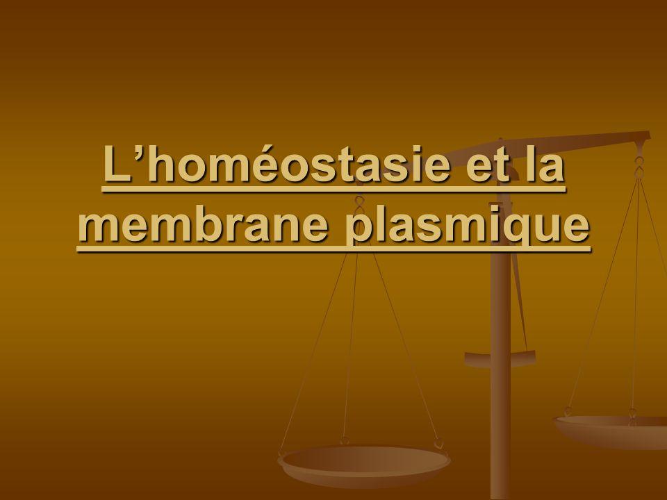 Lhoméostasie et la membrane plasmique