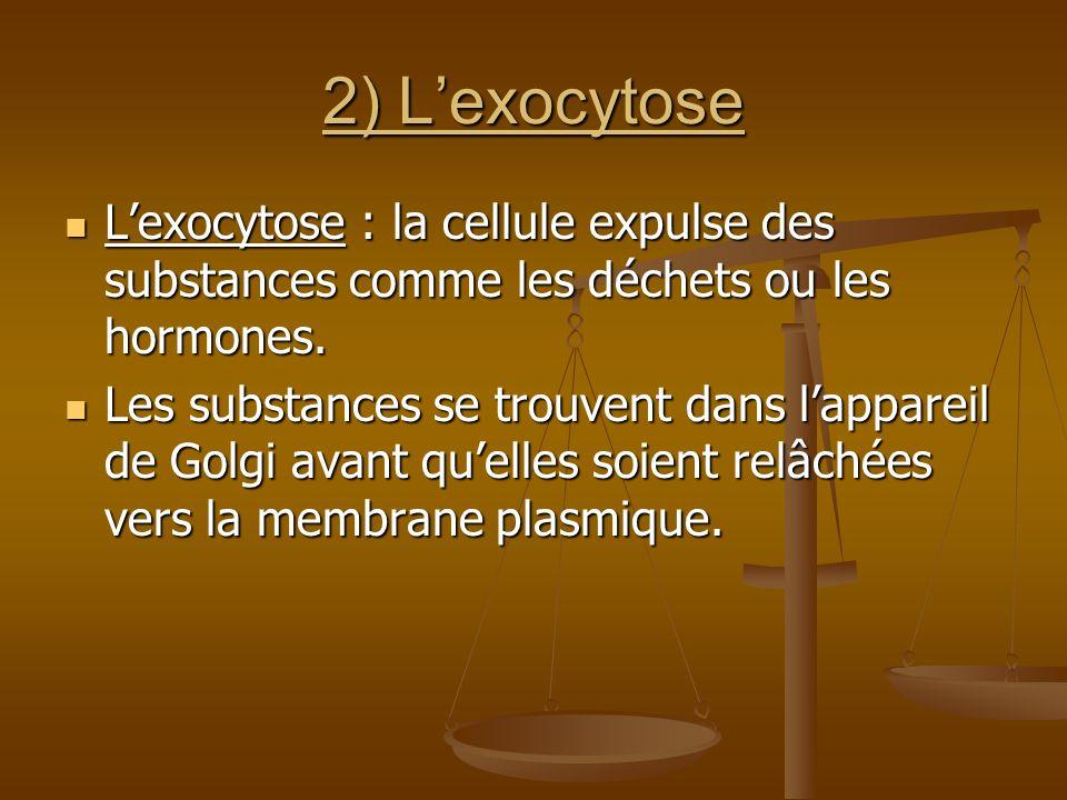 2) Lexocytose Lexocytose : la cellule expulse des substances comme les déchets ou les hormones. Lexocytose : la cellule expulse des substances comme l