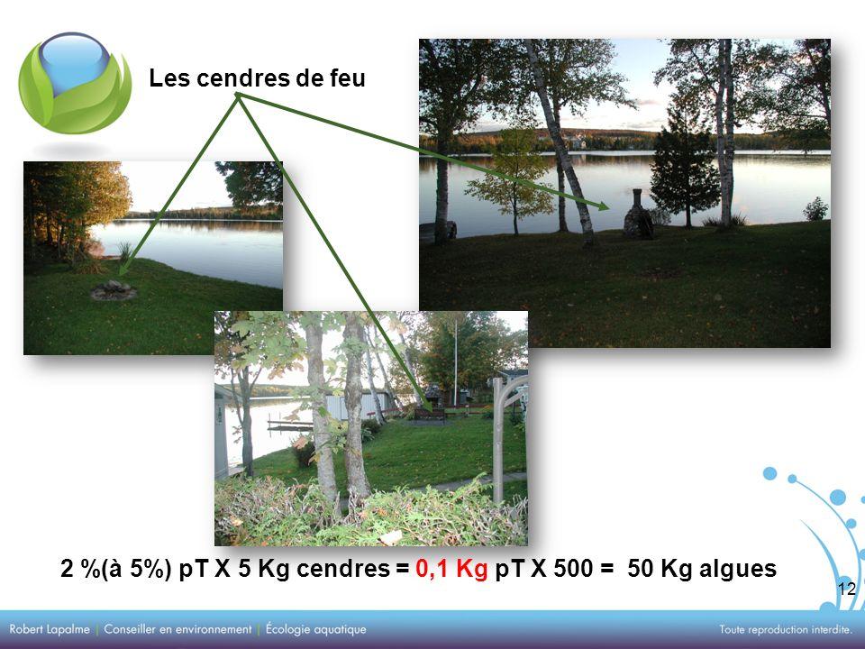 12 Les cendres de feu 2 %(à 5%) pT X 5 Kg cendres = 0,1 Kg pT X 500 = 50 Kg algues
