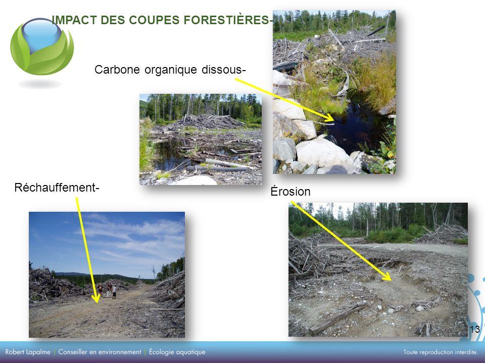 13 IMPACT DES COUPES FORESTIÈRES- Carbone organique dissous- Érosion Réchauffement-
