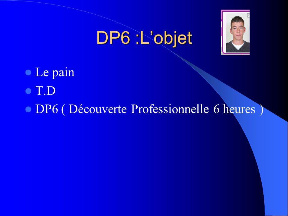 DP6 :Lobjet Le pain T.D DP6 ( Découverte Professionnelle 6 heures )