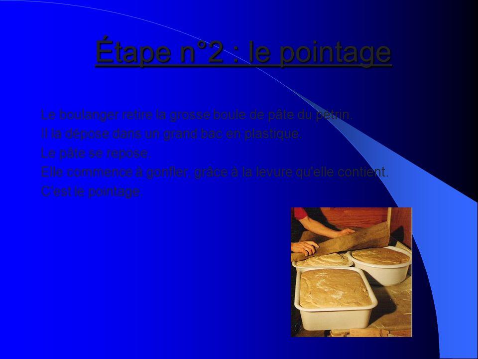 Le boulanger retire la grosse boule de pâte du pétrin. Il la dépose dans un grand bac en plastique. Le pâte se repose. Elle commence à gonfler, grâce