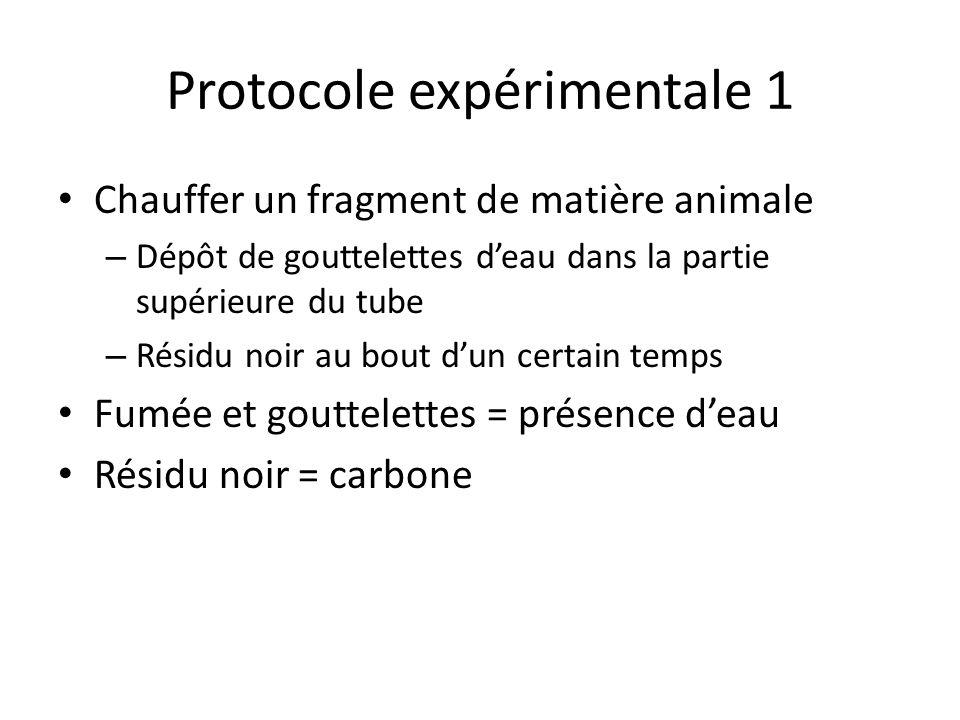Protocole expérimentale 1 Chauffer un fragment de matière animale – Dépôt de gouttelettes deau dans la partie supérieure du tube – Résidu noir au bout