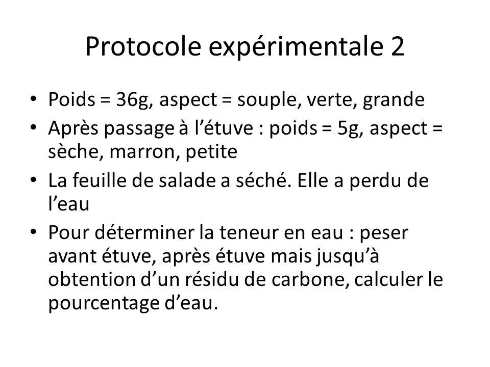 Protocole expérimentale 2 Poids = 36g, aspect = souple, verte, grande Après passage à létuve : poids = 5g, aspect = sèche, marron, petite La feuille d