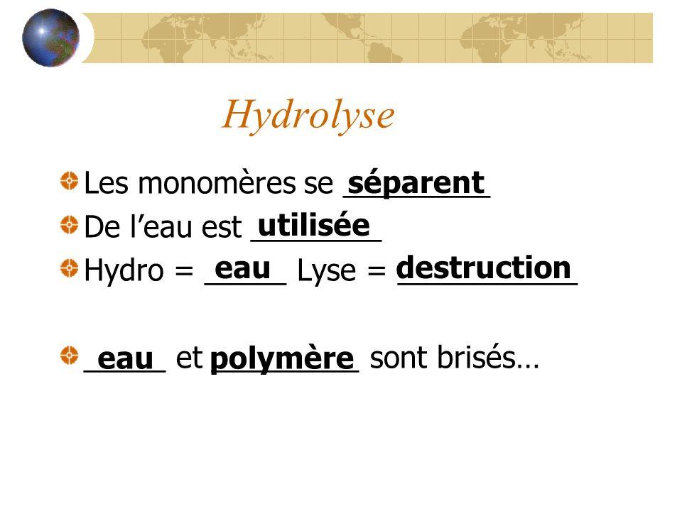 Hydrolyse Les monomères se _________ De leau est ________ Hydro = _____ Lyse = ___________ _____ et _________ sont brisés… séparent utilisée eaudestru