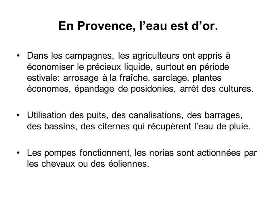 En Provence, leau est dor. Dans les campagnes, les agriculteurs ont appris à économiser le précieux liquide, surtout en période estivale: arrosage à l