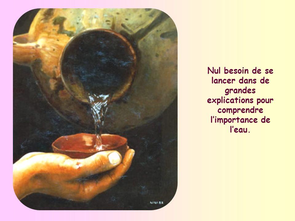 Dans cette perle de lÉvangile quest lentretien avec la Samaritaine aux abords du puits de Jacob, Jésus présente leau comme lélément le plus courant, mais aussi le plus désiré, le plus nécessaire à la vie dans le désert.
