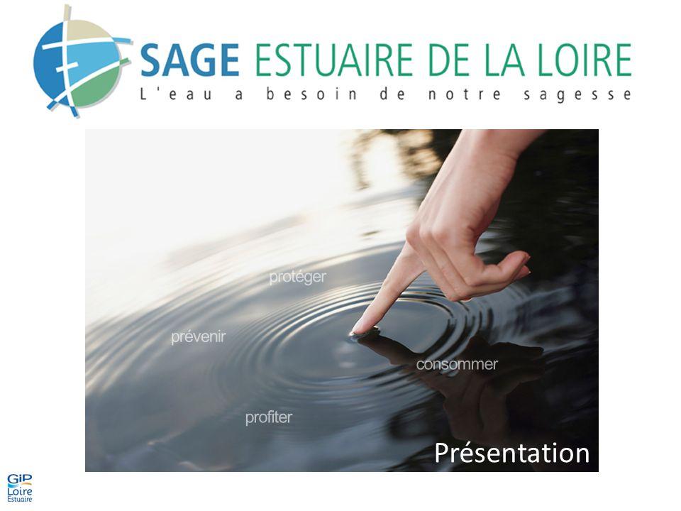 Les objectifs du SAGE La qualité des eaux – Les enjeux La DCE impose aux États membres de parvenir au bon état des eaux en 2015.