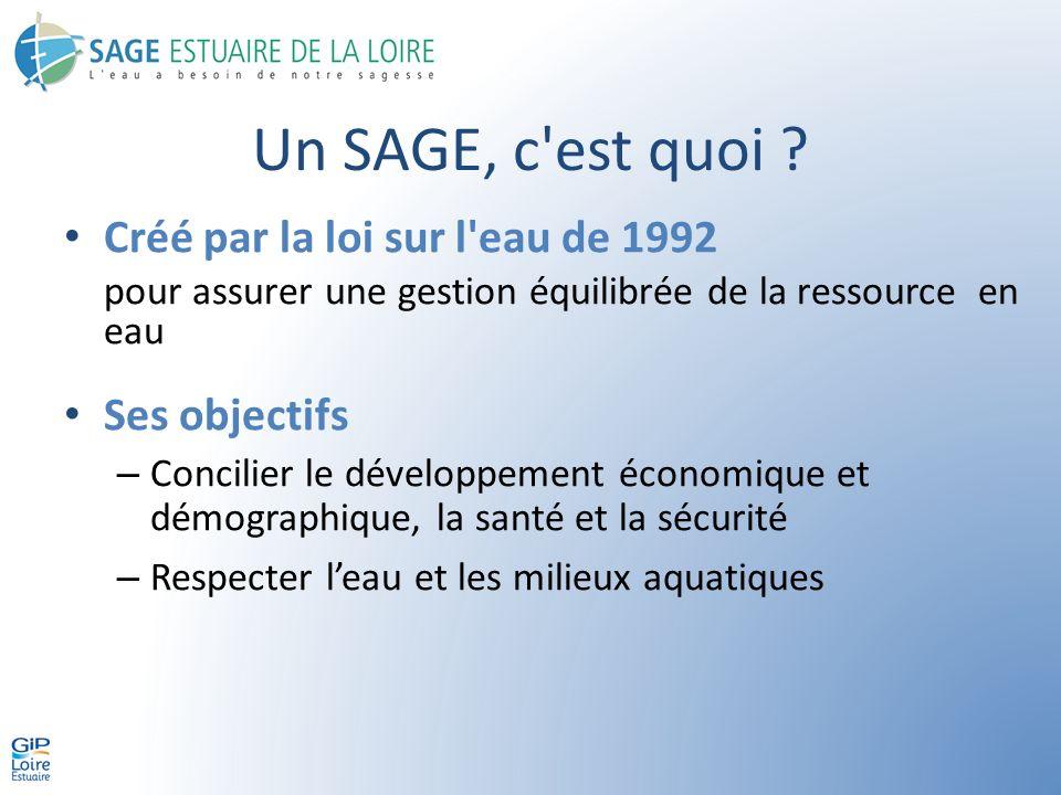 Les objectifs du SAGE La qualité des eaux – Les enjeux La qualité des eaux est aujourd hui l aspect le plus critique sur le territoire du SAGE et nécessite une prise de conscience collective .