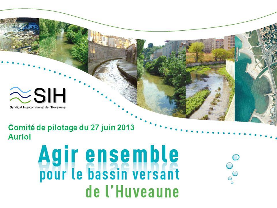 Comité de pilotage du 27 juin 2013 Auriol