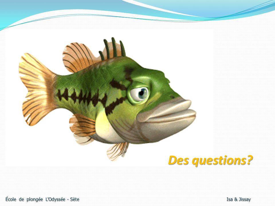 Des questions? École de plongée L'Odyssée - Sète Isa & Jissay