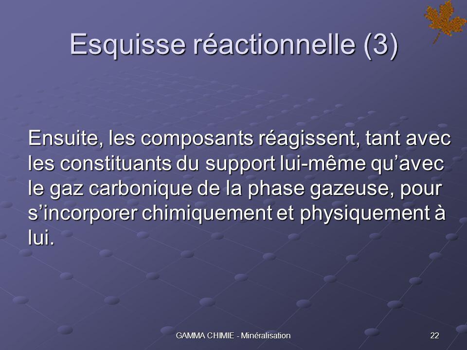 21GAMMA CHIMIE - Minéralisation Esquisse réactionnelle (2) Sur certains supports, lajout dun primaire (ACTICAL) dans leau de mouillage est nécessaire.