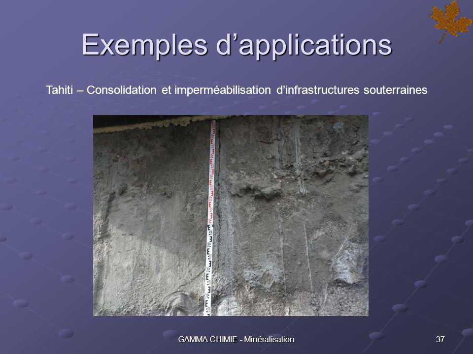 36GAMMA CHIMIE - Minéralisation Exemples dapplications SNCF – Protection de la façade de la Gare de St Pierre des Corps (37)
