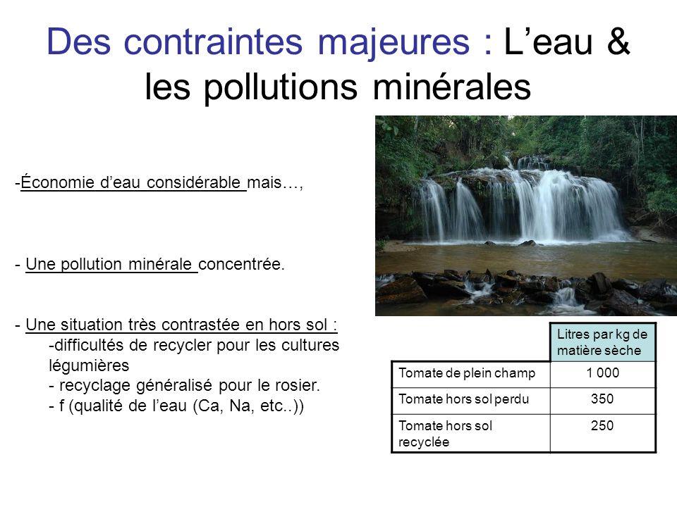 Des contraintes majeures : Leau & les pollutions minérales Litres par kg de matière sèche Tomate de plein champ1 000 Tomate hors sol perdu350 Tomate h