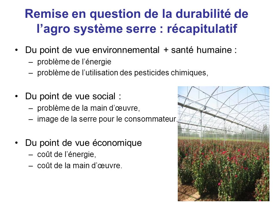 Remise en question de la durabilité de lagro système serre : récapitulatif Du point de vue environnemental + santé humaine : –problème de lénergie –pr