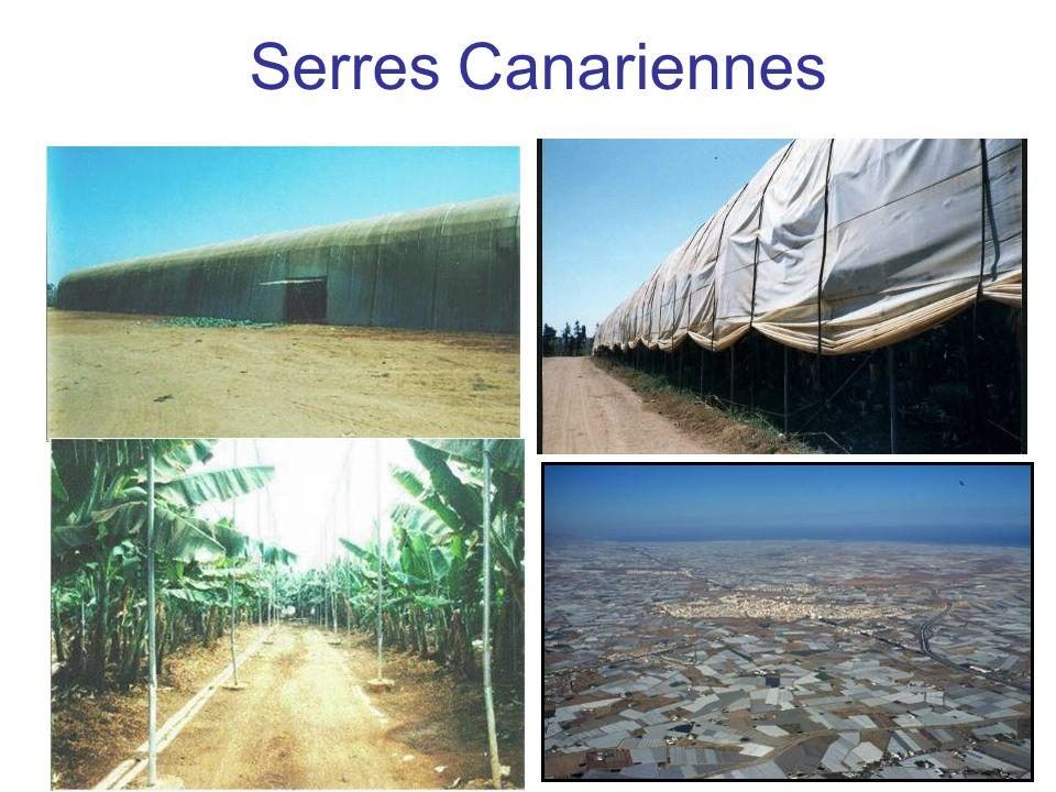 Le programme Ecoserre Programme (2006-2008) financé par lANR qui regroupe des équipes de lINRA, de lUniversité et des Instituts Techniques relevant de disciplines biotechniques et économiques autour de la question de la viabilité des systèmes de cultures protégées (horticoles et maraîchers) dans un contexte dagriculture durable.