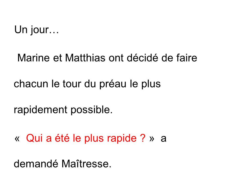 ? Non, cest Matthias !! Cest Marine ! Non, cest Marine ! Matthias ! Marine !