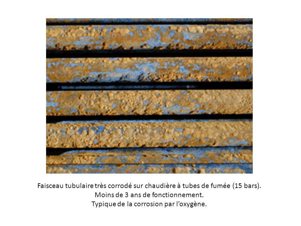 Faisceau tubulaire très corrodé sur chaudière à tubes de fumée (15 bars). Moins de 3 ans de fonctionnement. Typique de la corrosion par loxygène.