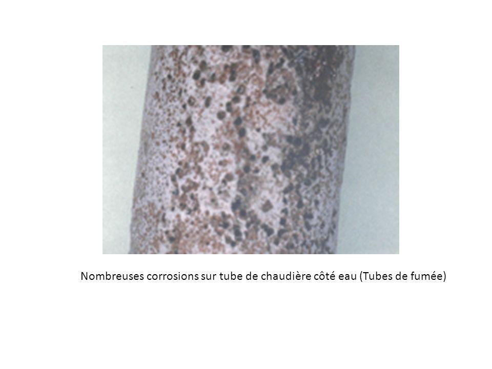 Nombreuses corrosions sur tube de chaudière côté eau (Tubes de fumée)