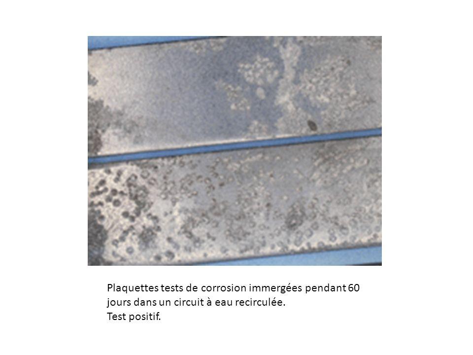 Plaquettes tests de corrosion immergées pendant 60 jours dans un circuit à eau recirculée. Test positif.