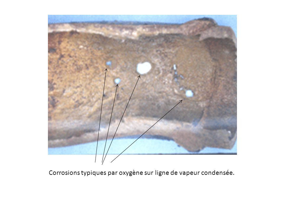 Corrosions typiques par oxygène sur ligne de vapeur condensée.