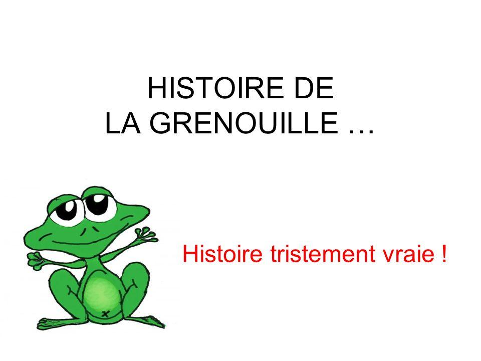Histoire vraie ! HISTOIRE DE LA GRENOUILLE … Histoire tristement vraie ! Histoire vraie !