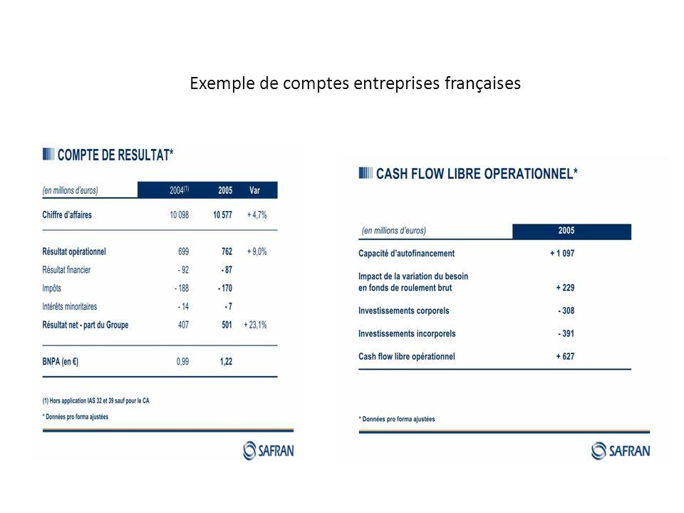 Exemple de comptes entreprises françaises