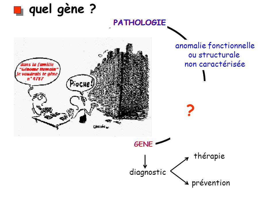 quel gène ? diagnostic thérapie prévention PATHOLOGIE GENE anomalie fonctionnelle ou structurale non caractérisée ?