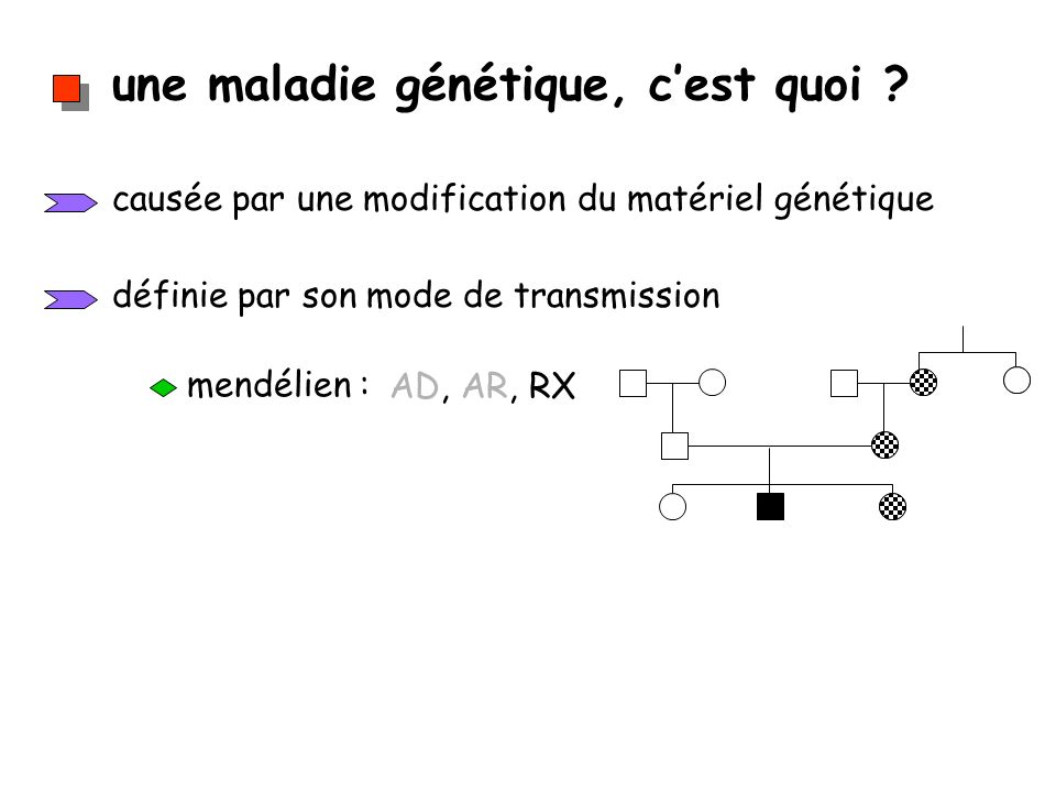 une maladie génétique, cest quoi ? causée par une modification du matériel génétique définie par son mode de transmission mendélien : AD, AR, RX