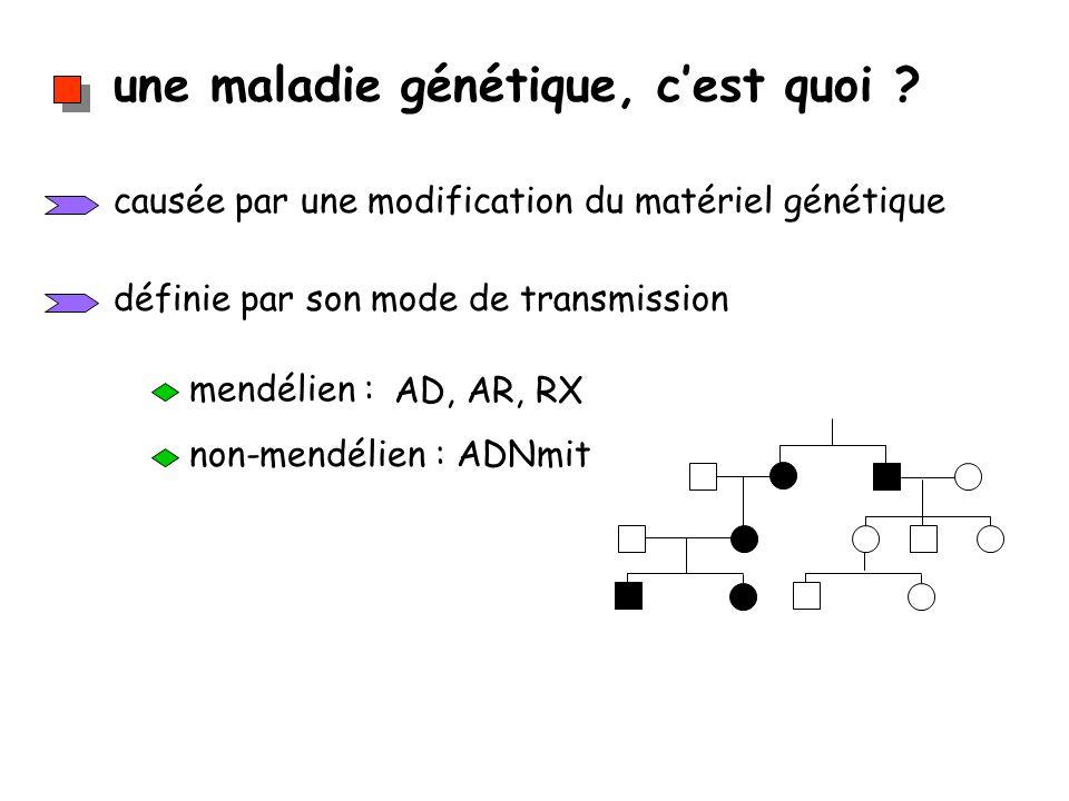une maladie génétique, cest quoi ? causée par une modification du matériel génétique définie par son mode de transmission mendélien : AD, AR, RX non-m