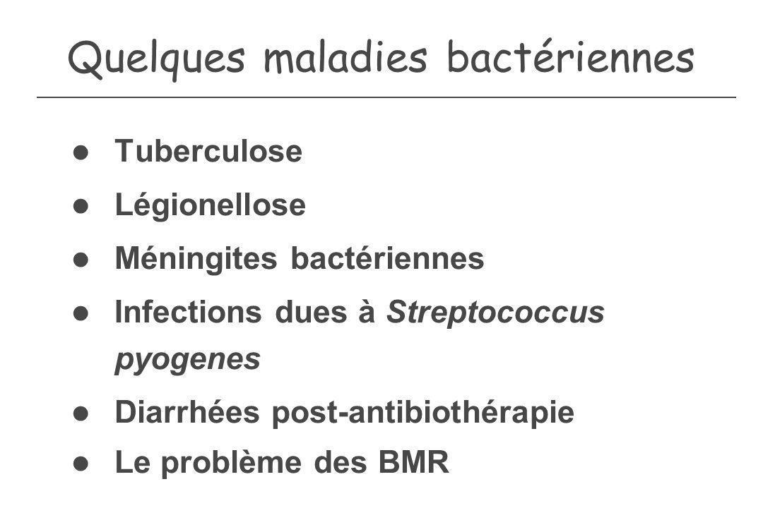 Quelques maladies bactériennes Tuberculose Légionellose Méningites bactériennes Infections dues à Streptococcus pyogenes Diarrhées post-antibiothérapi