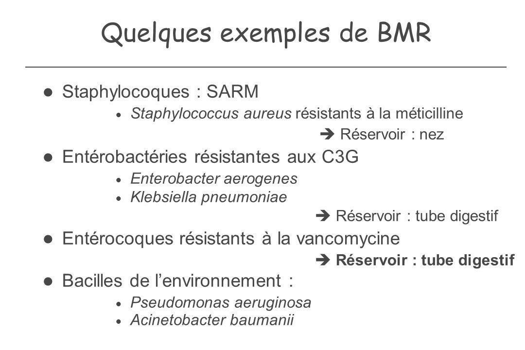 Quelques exemples de BMR Staphylocoques : SARM Staphylococcus aureus résistants à la méticilline Réservoir : nez Entérobactéries résistantes aux C3G E