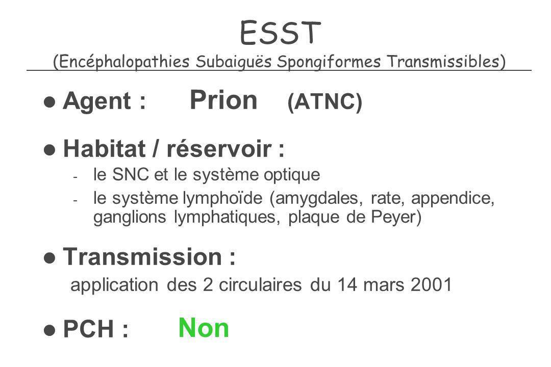 ESST (Encéphalopathies Subaiguës Spongiformes Transmissibles) Agent : Prion (ATNC) Habitat / réservoir : - le SNC et le système optique - le système l