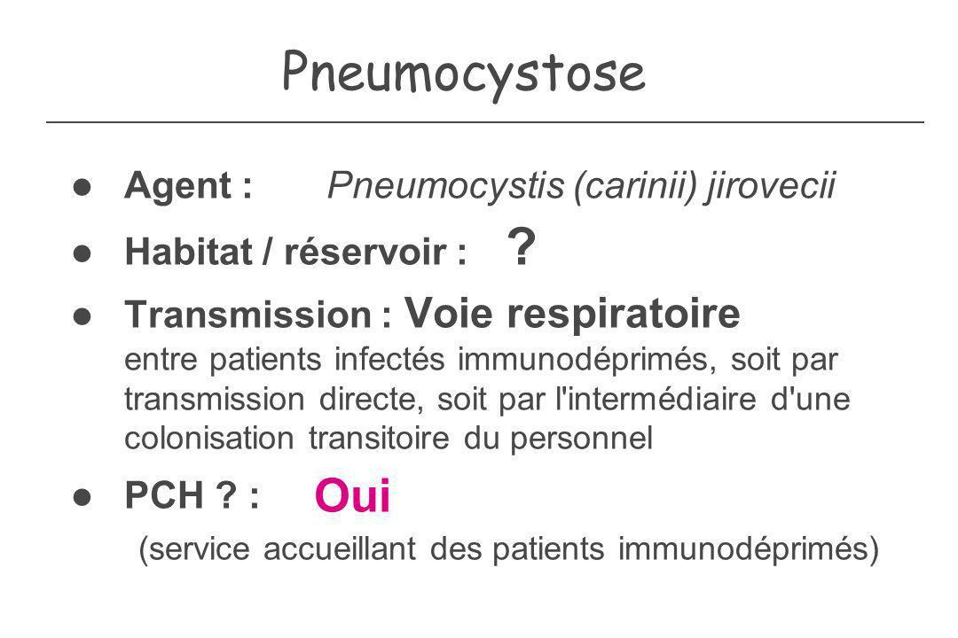 Quelques exemples de BMR Staphylocoques : SARM Staphylococcus aureus résistants à la méticilline Réservoir : nez Entérobactéries résistantes aux C3G Enterobacter aerogenes Klebsiella pneumoniae Réservoir : tube digestif Entérocoques résistants à la vancomycine Réservoir : tube digestif Bacilles de lenvironnement : Pseudomonas aeruginosa Acinetobacter baumanii