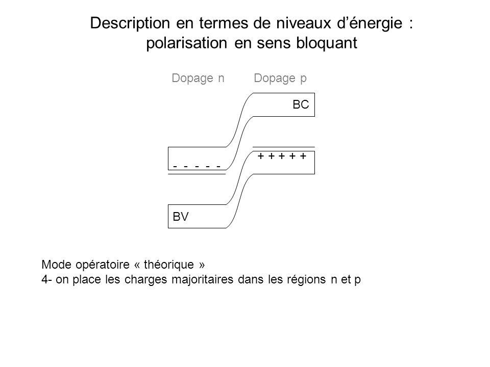 Description en termes de niveaux dénergie : polarisation en sens bloquant BC BV Mode opératoire « théorique » 4- on place les charges majoritaires dan