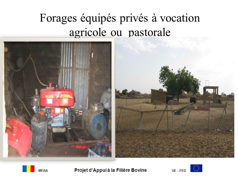 Forages équipés privés à vocation agricole ou pastorale MERA Projet dAppui à la Filière Bovine UE - FED