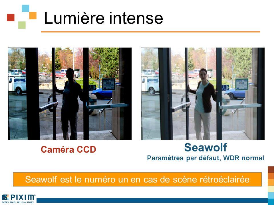 Lumière intense Seawolf est le numéro un en cas de scène rétroéclairée Caméra CCD Seawolf Paramètres par défaut, WDR normal