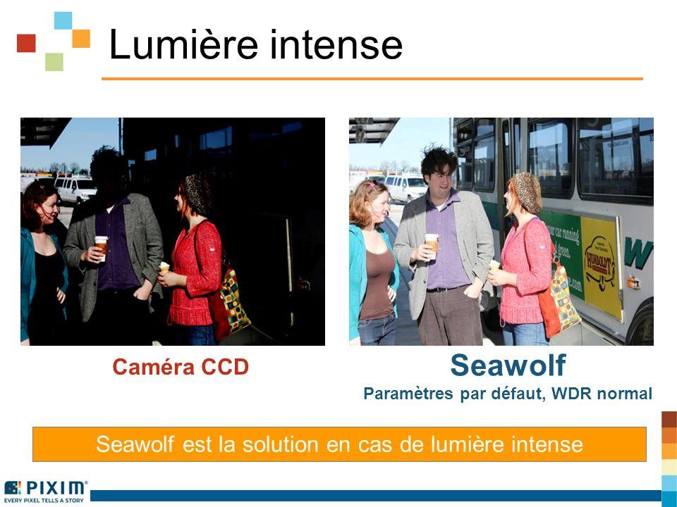 Lumière intense Seawolf est la solution en cas de lumière intense Caméra CCD Seawolf Paramètres par défaut, WDR normal