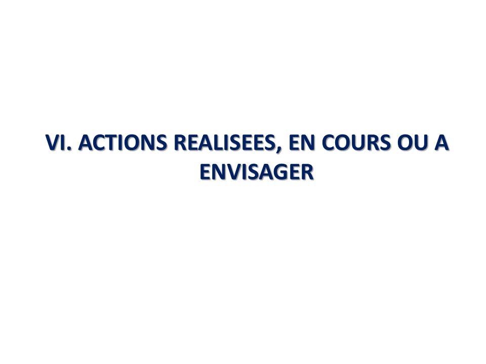 VI. ACTIONS REALISEES, EN COURS OU A ENVISAGER
