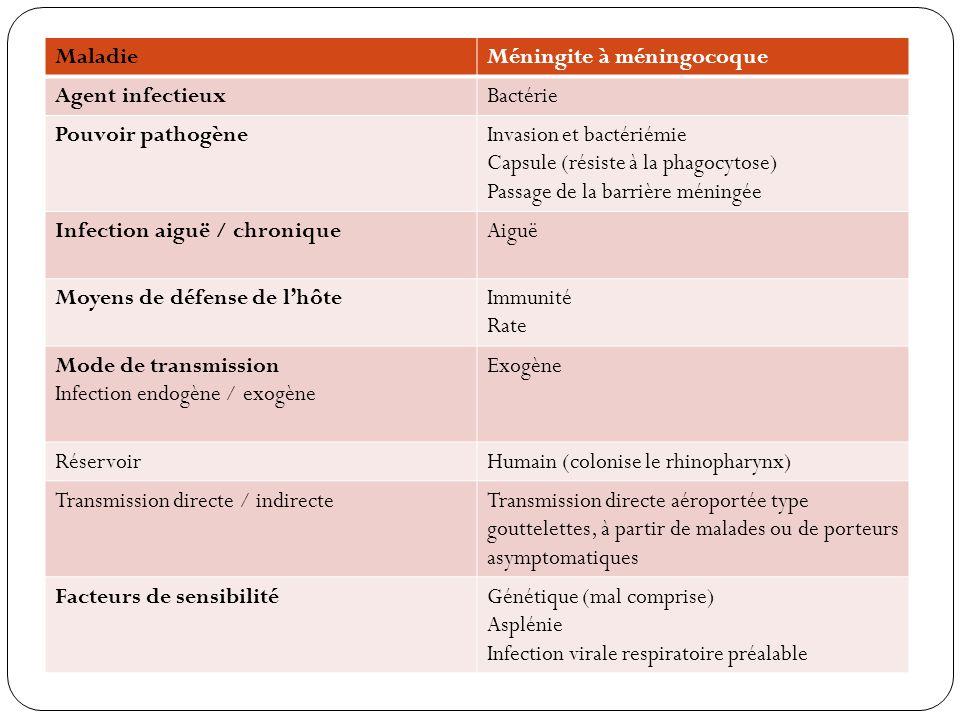 MaladieMéningite à méningocoque Agent infectieuxBactérie Pouvoir pathogèneInvasion et bactériémie Capsule (résiste à la phagocytose) Passage de la bar