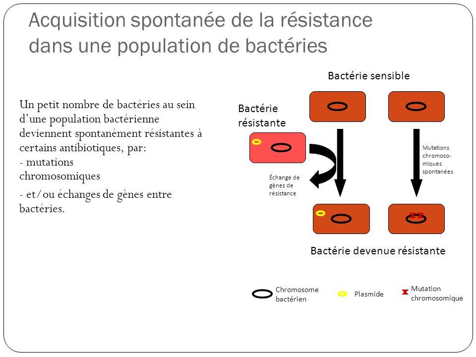 Acquisition spontanée de la résistance dans une population de bactéries Un petit nombre de bactéries au sein dune population bactérienne deviennent sp