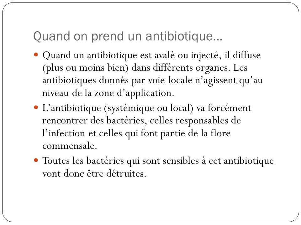 Quand on prend un antibiotique… Quand un antibiotique est avalé ou injecté, il diffuse (plus ou moins bien) dans différents organes. Les antibiotiques