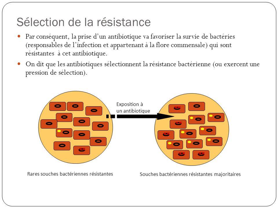 Sélection de la résistance Par conséquent, la prise dun antibiotique va favoriser la survie de bactéries (responsables de linfection et appartenant à
