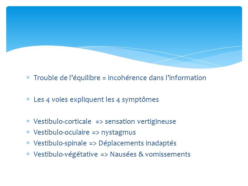 Trouble de léquilibre = incohérence dans linformation Les 4 voies expliquent les 4 symptômes Vestibulo-corticale => sensation vertigineuse Vestibulo-o